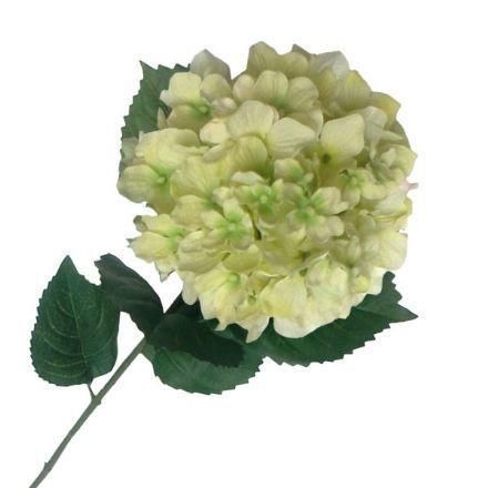 salg af Creme/lime hortensia, 80 cm. - kunstige blomster