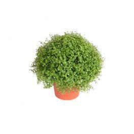 salg af husfred 15 cm - kunstig blomst - kunstig plante