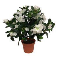 salg af Hvid Azalea, 30 cm. - kunstige blomster