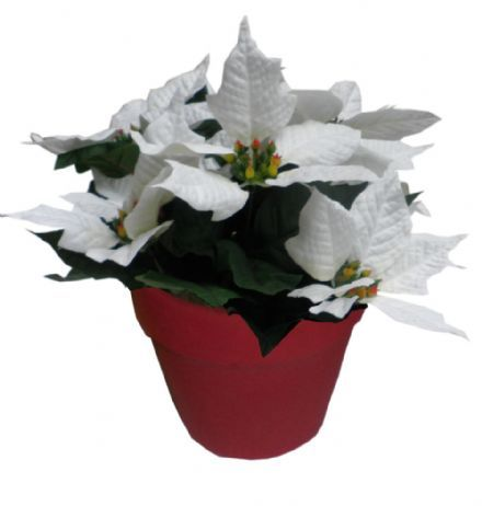 Oppdatert Hvid julestjerne i rød potte 26 cm. 7 blomster - Kunstige julestjerner IN-58