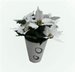 salg af Julestjerne buket på stilk, 7 hvide blomster- højde  26 cm.