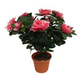 salg af Hvid/pink Azalea, 30 cm. - kunstige blomster