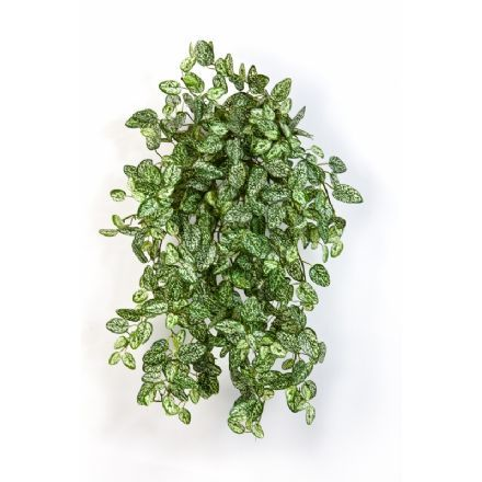 salg af Hypoetes hængebusk 54 cm - kunstig plante