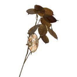 salg af Judas penge , brun - 75 cm. - kunstig blomst