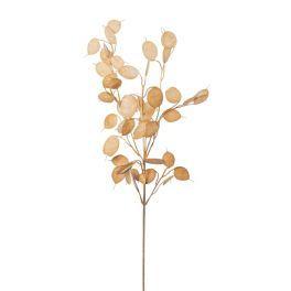 salg af Judaspenge, brun - 75 cm. - kunstige blomster