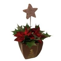 salg af Juledekoration med r�d julestjerne
