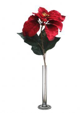 salg af Julestjerne stilk - rød - højde 82 cm.