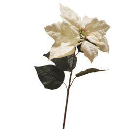 salg af Julestjerne stilk - hvid - højde 82 cm.