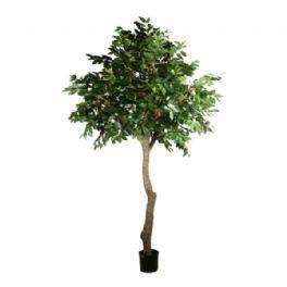 salg af Kaffetræ, 350 cm. - kunstige træer