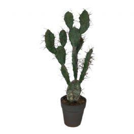 salg af Kaktus, 60 cm. - kunstige planter