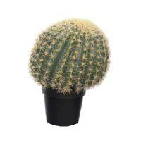salg af Kaktus, Kugle - Ø50 cm. - kunstige plantre
