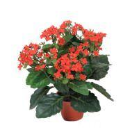 salg af Rød Brændende kærlighed, 30 cm. - kunstige blomster