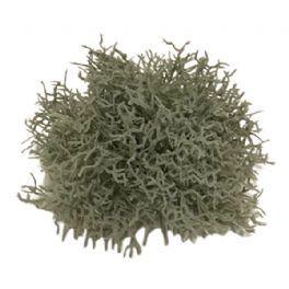 salg af Koral halvkugle, 15 cm - kunstige planter