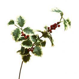 salg af Kristtjørn gren - 3 kviste - grøn hvid med røde bær, 70 cm.