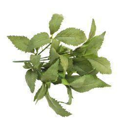salg af Mynte stilk - støv grøn - 30 cm. - kunstige krydderurter