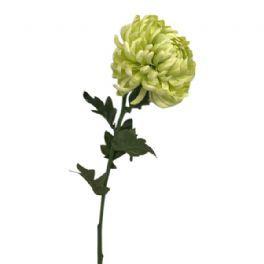 salg af Lime krysantemum 60 cm. - kunstige blomster