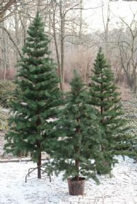 salg af Kunstig Juletr� med helst�bte grene - h�jde 200 cm.