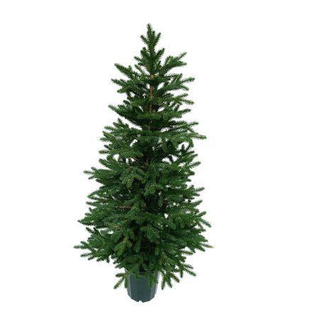 Kunstig rødgran - Juletræ, 130 cm. i potte - Kunstigt Juletræ, PE, naturtro