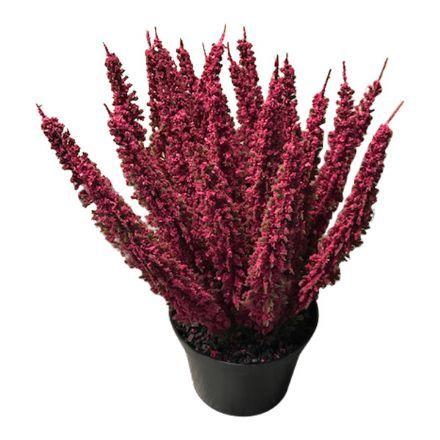 salg af Erica lyng, fuchsia - 27 cm. - kunstige blomster