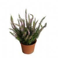 salg af Lyng, lyserød - 25 cm. - kunstige blomster