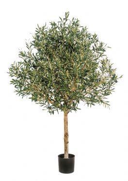 salg af Oliventræ, opstammet - 2 m. - kunstige træer