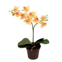 salg af orkide - 24 cm. - fersken - kunstig plante