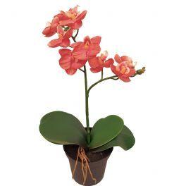 salg af Orkide - 24 cm. - gammel rosa - kunstig plante