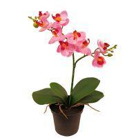 salg af Orkide - 24 cm. - pink - kunstig plante