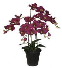 salg af Bordeux orkide, 68 cm. - kunstige blomster