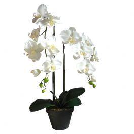 salg af Orkide 66 cm. hvid 2 grene - kunstig plante