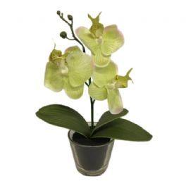 salg af Orkide i glas, grøn - 25 cm. - kunstig orkide