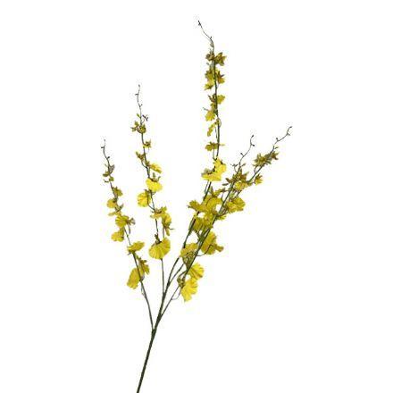 salg af Orkidegren gul 95 cm.