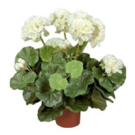 salg af Hvid Pelargonie, 35 cm. - kunstige blomster