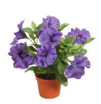 salg af Lilla Petunia, 25 cm. - kunstige blomster