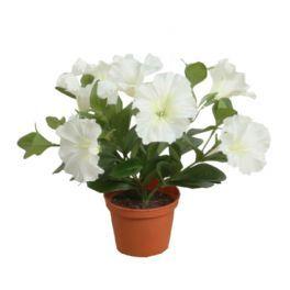 salg af Petunia - Hvid - højde 25 cm. - kunstig blomst