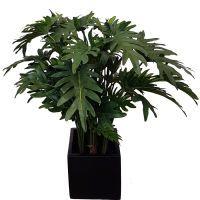 salg af Philodendron 75 cm. - kunstig plante