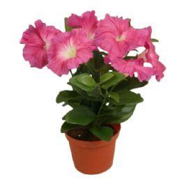 salg af Pink Petunia, 25 cm. - kunstige blomster
