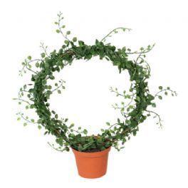 salg af Pletter i luften bøjle, 30 cm. - kunstig plante