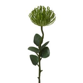 salg af Protea, grøn m/blade - 61 cm. - kunstige blomster