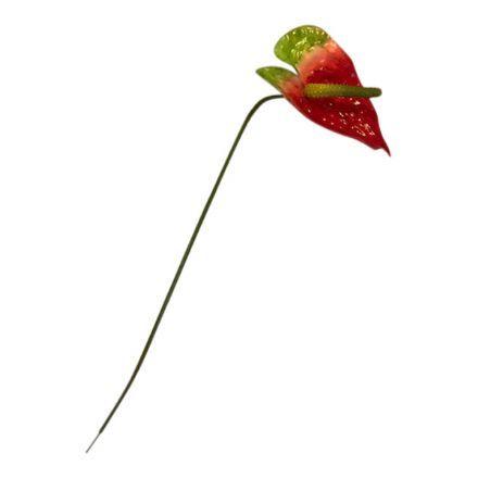 salg af Rød anthurium, 35 cm. - kunstige blomster