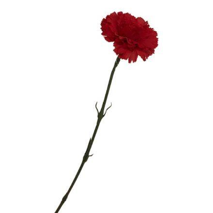 salg af Rød nellike, 55 cm. - kunstige blomster
