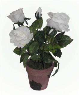 salg af Rose, potteplante 34 cm. - Hvid - kunstige blomster