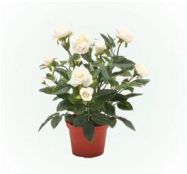 salg af Rose potteplante hvid 22cm. - kunstige blomster