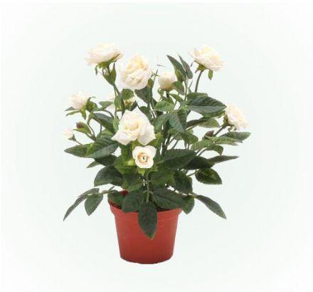 salg af Creme potterose, 22 cm. - kunstige blomster