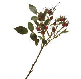salg af Rosengren med røde bær, 60 cm.
