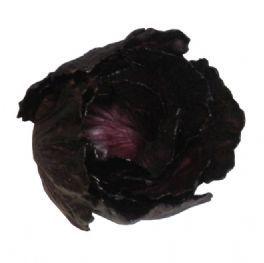 salg af Salat, rød, 15 cm.
