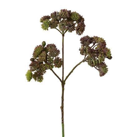 salg af Sedum, brun - 35 cm. - kunstige blomster