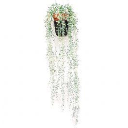 salg af Senecio 70 cm. hængeplante - turkis-hvid - kunstig plante