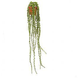 salg af Senecio hænge, 75 cm. - kunstige planter