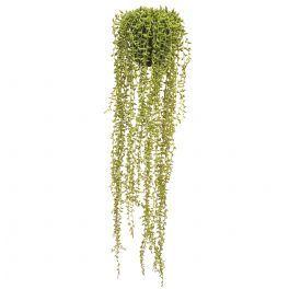 salg af Senecio Large 75 cm. i hængepotte - kunstig plante
